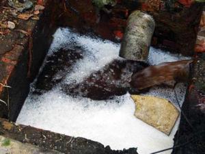 Xử lý nước thải khu dân cư